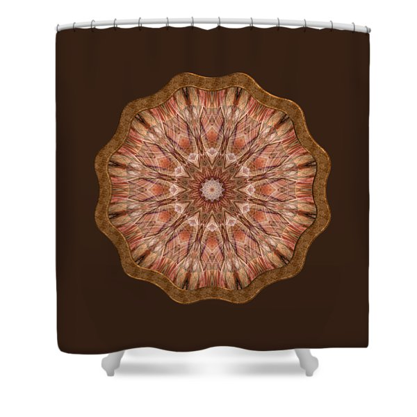 Ley Lines Shower Curtain