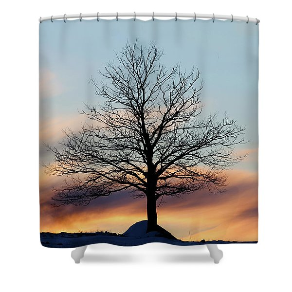 Liberty Tree Sunset Shower Curtain