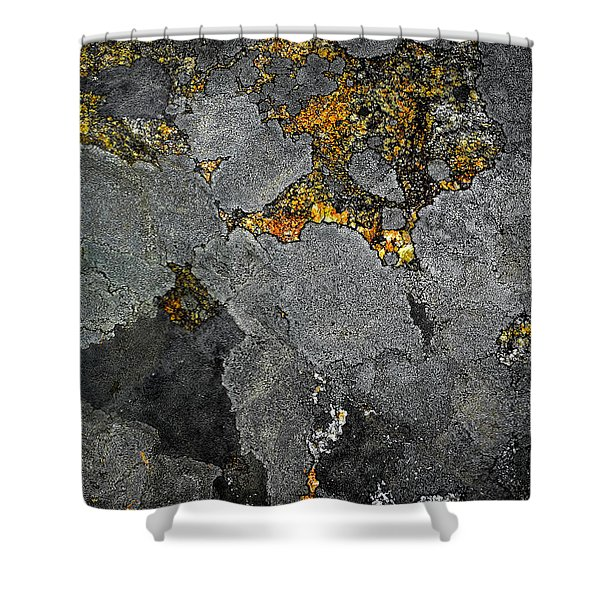 Lichen On Granite Rock Abstract Shower Curtain