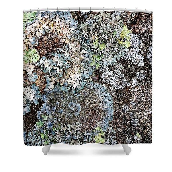 Lichens Shower Curtain