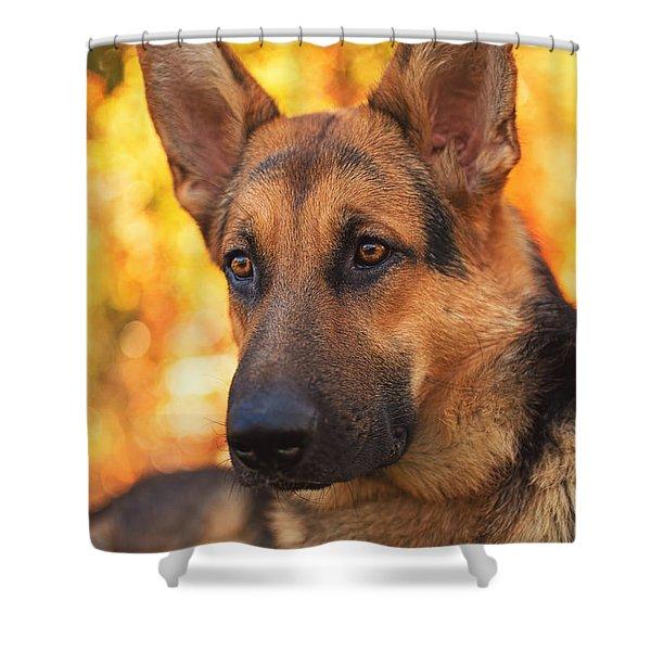Liesl  Shower Curtain