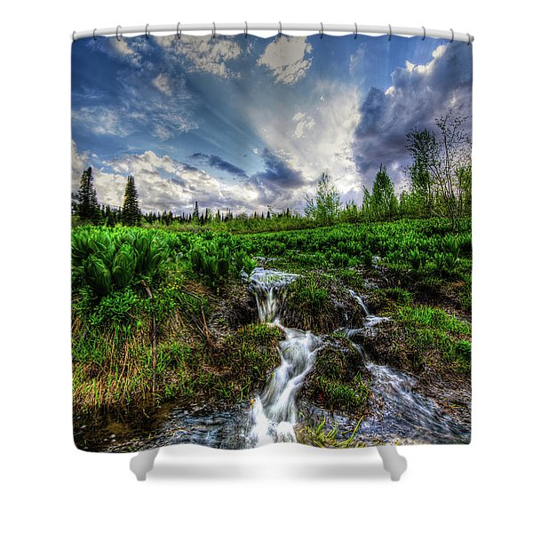 Life Giving Stream Shower Curtain