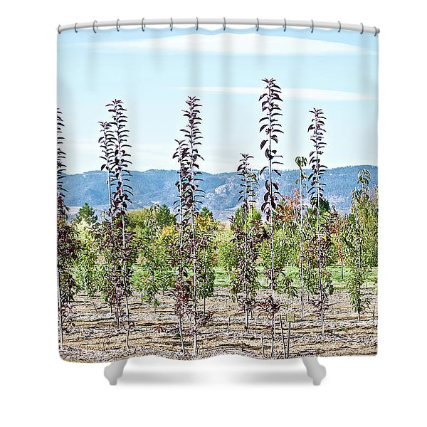 Life On A Tree Farm-foothills View #1 Shower Curtain