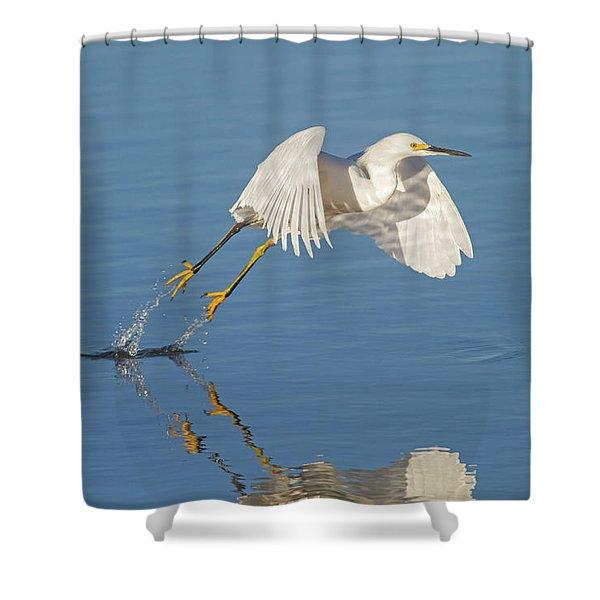 Lift Off- Snowy Egret Shower Curtain