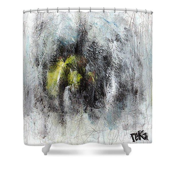 Lift Shower Curtain