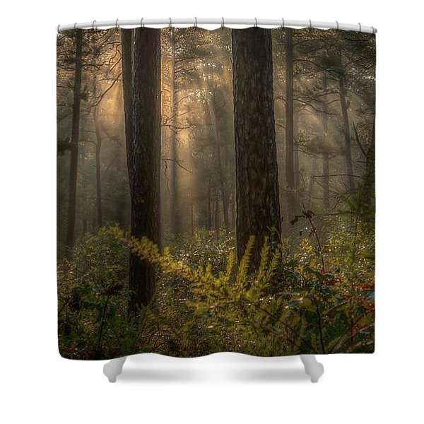 Light Bath Shower Curtain