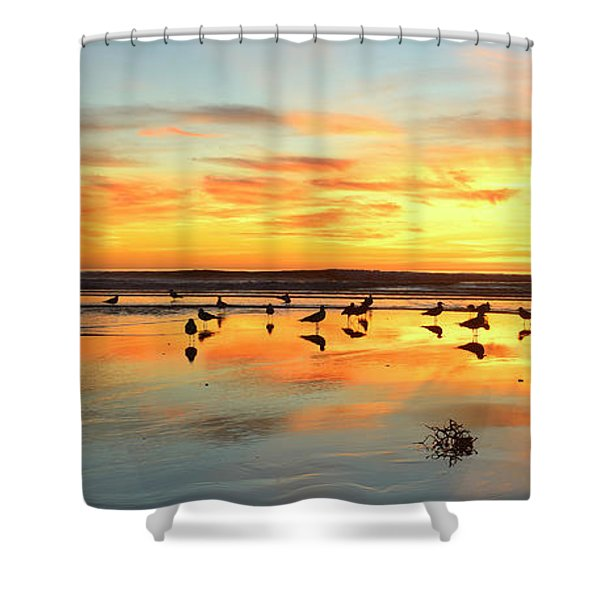 Light Dance North County Shower Curtain