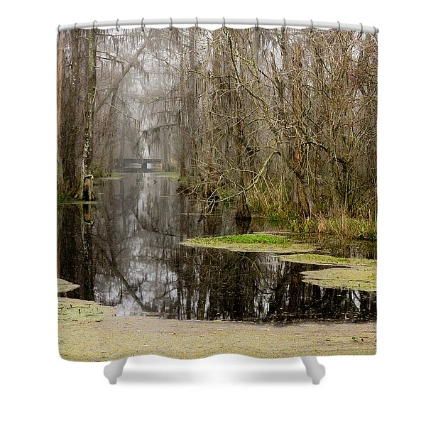 Light Fog On The Swamp Shower Curtain