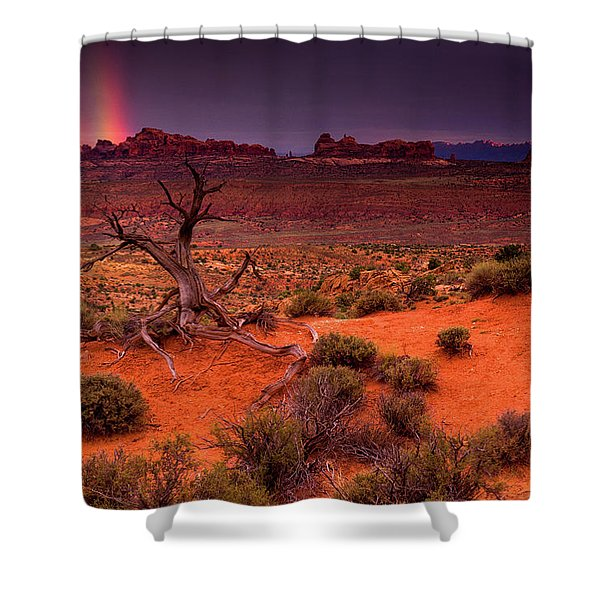 Shower Curtain featuring the photograph Light Of The Desert by John De Bord