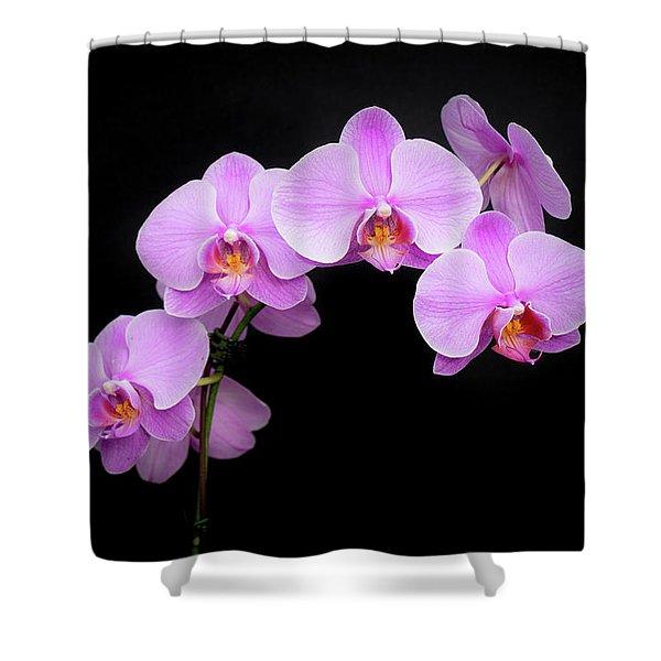 Light On The Purple Please Shower Curtain