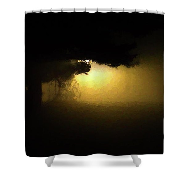 Shower Curtain featuring the digital art Light Through The Tree by Leeon Photo