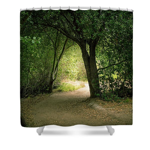 Light Through The Tree Tunnel Shower Curtain