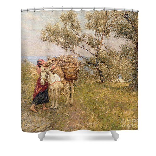 Ligurian Olives Shower Curtain