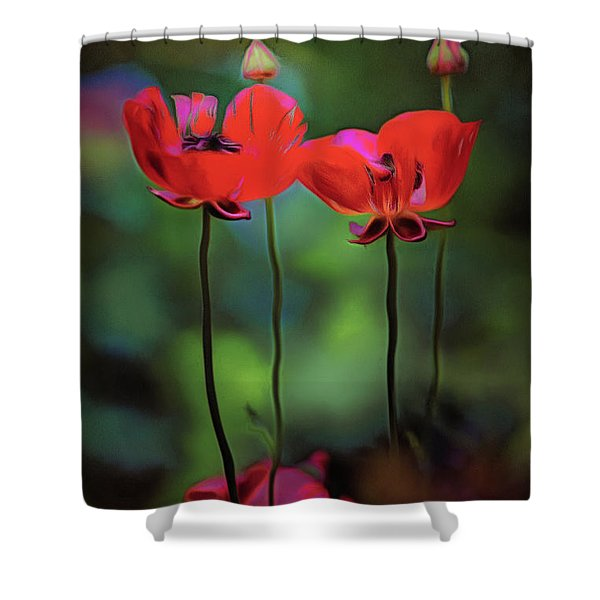 Like Anything Else, This Too Shall Pass.... Shower Curtain