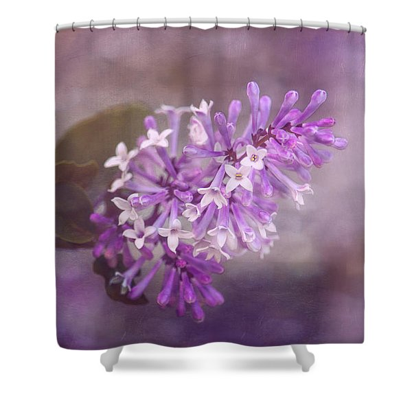 Lilac Blossom Shower Curtain