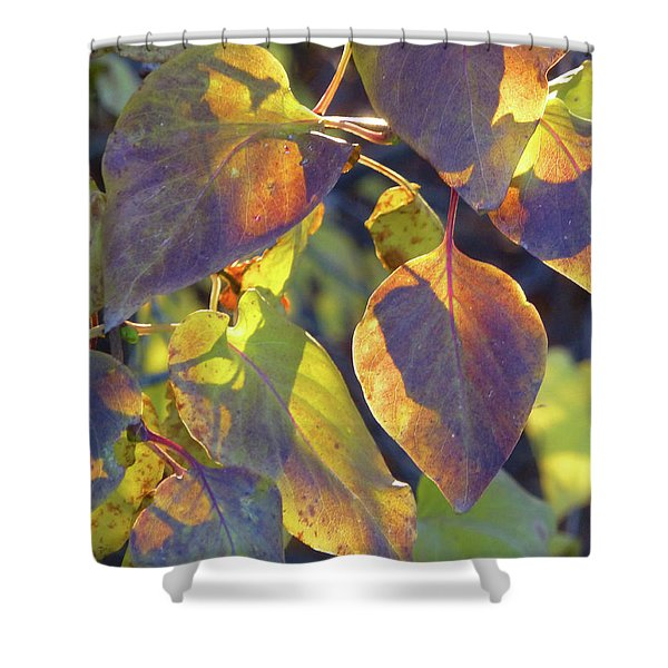 Shower Curtain featuring the photograph Lilac Leaves by Cris Fulton
