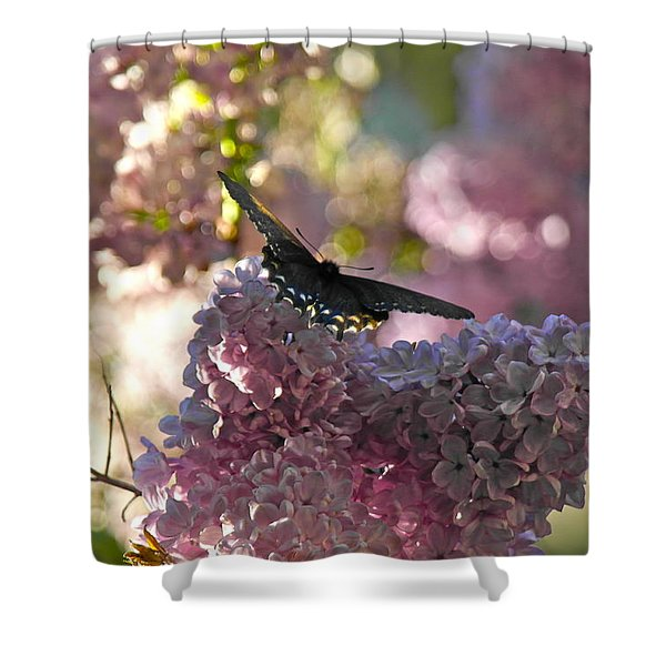 Lilac World Shower Curtain