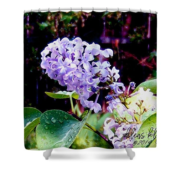 Shower Curtain featuring the photograph Lilacs by Deleas Kilgore