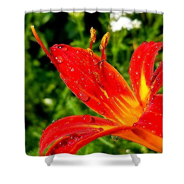 Lily And Raindrops Shower Curtain