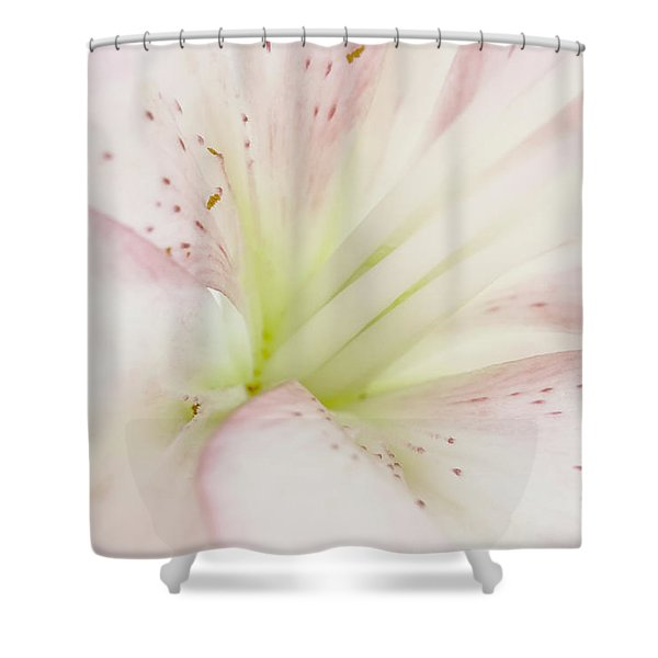 Lily Centered Shower Curtain