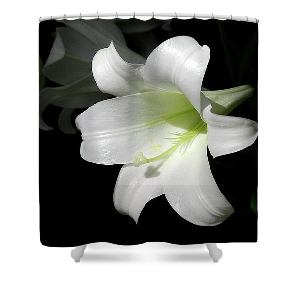 Lily In The Light Shower Curtain