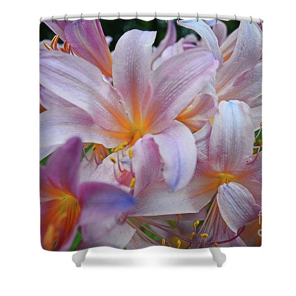 Lily Lavender Closeup Shower Curtain