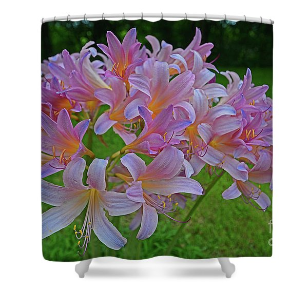 Lily Lavender Shower Curtain