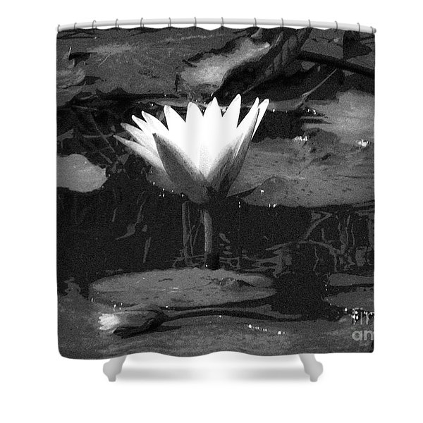 Lily Of The Lake Shower Curtain
