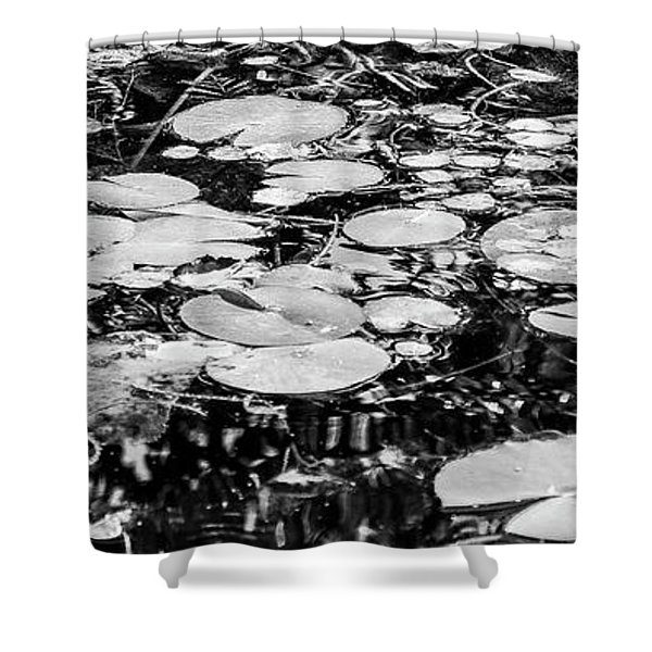 Lily Pads, Black And White Shower Curtain