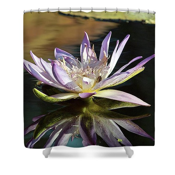 Lily Reflections Shower Curtain