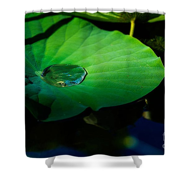 Lily Water Shower Curtain