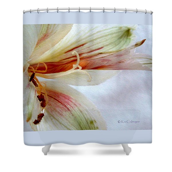 Lily With Texture Shower Curtain