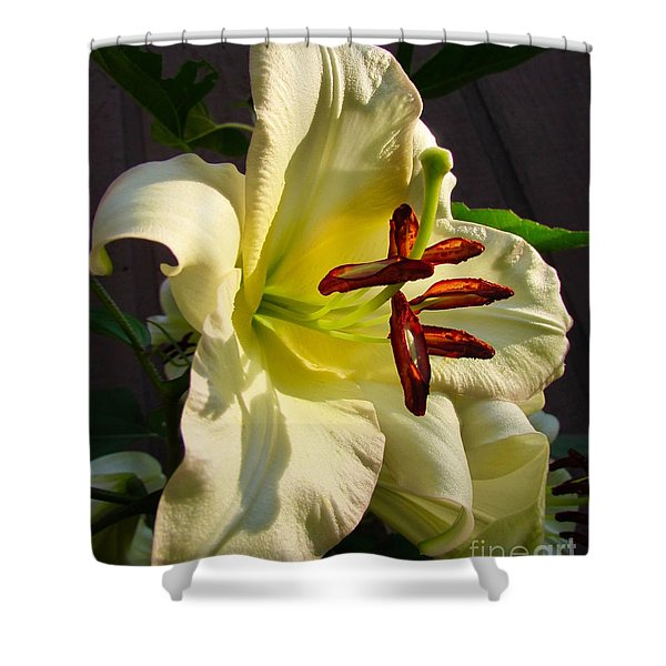 Lily's Morning Shower Curtain