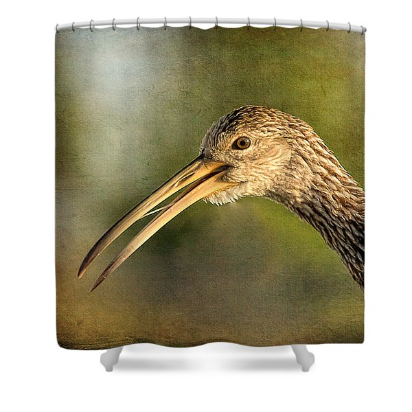 Limpkin 1 Shower Curtain