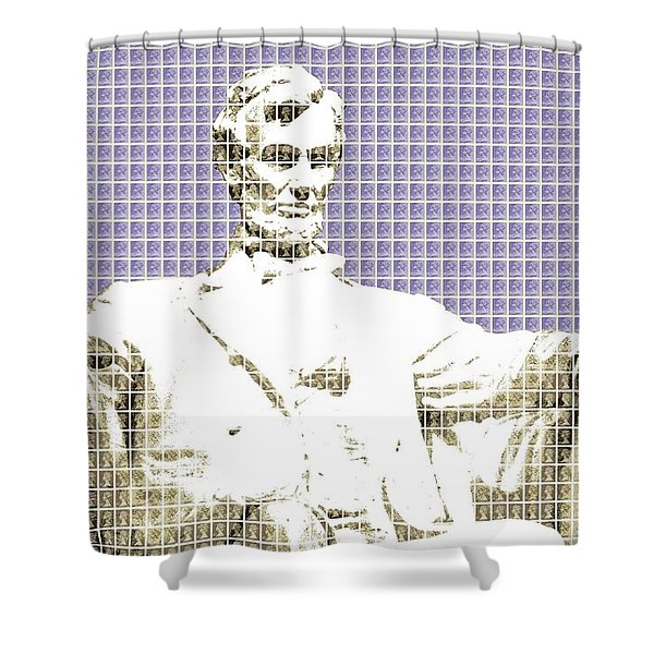Lincoln Memorial - Violet Shower Curtain