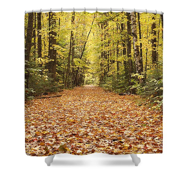 Shower Curtain featuring the photograph Lincoln Woods Trail  - White Mountains New Hampshire by Erin Paul Donovan