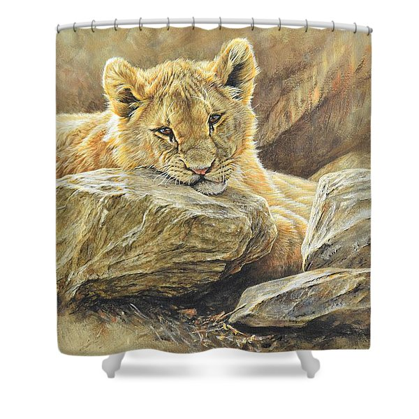 Shower Curtain featuring the painting Lion Cub Study by Alan M Hunt