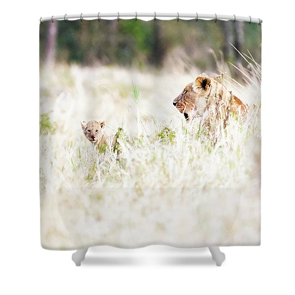 Lioness With Baby Cub In Grasslands Shower Curtain