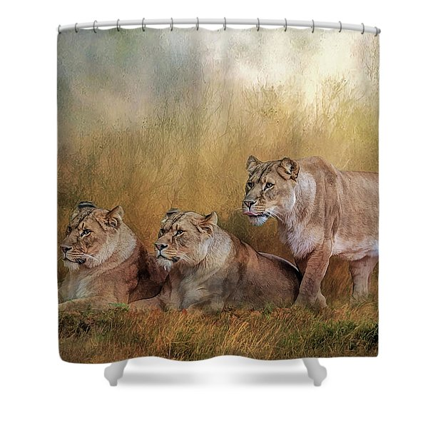 Lionesses Watching The Herd Shower Curtain