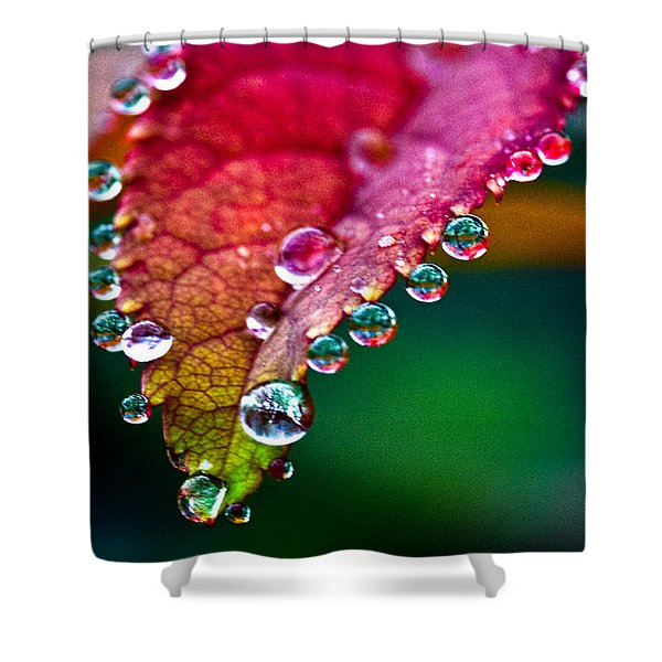 Liquid Beads Shower Curtain by Christopher Holmes