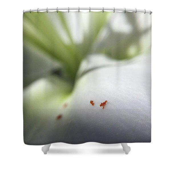 Little Alps Shower Curtain
