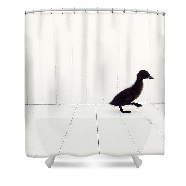 Little Shower Curtain