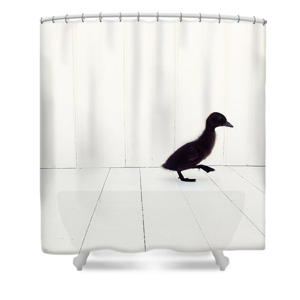 Little Shower Curtain