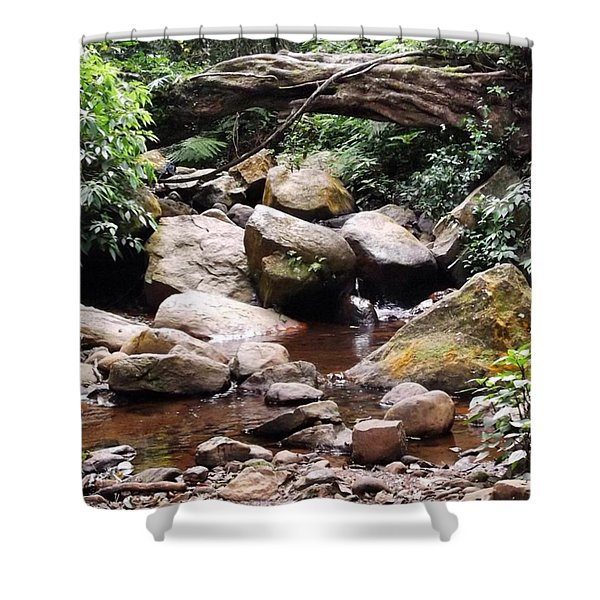 Bubbling Stream Shower Curtain