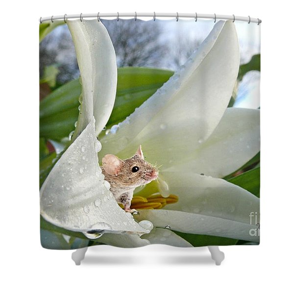 Little Field Mouse Shower Curtain