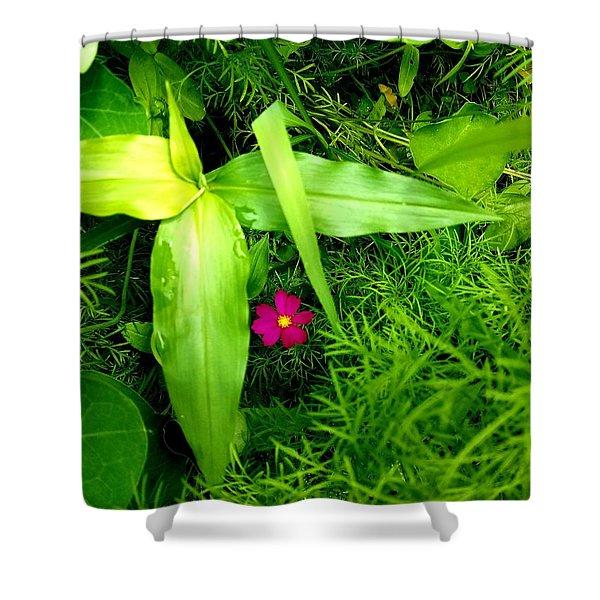 Little Flower Shower Curtain