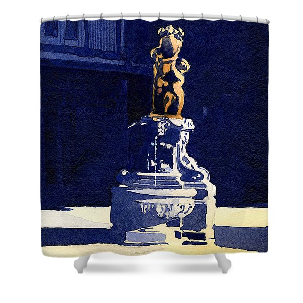 Little Fountain Shower Curtain