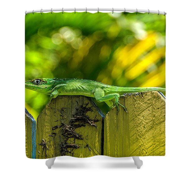 Little Green Visitor Shower Curtain