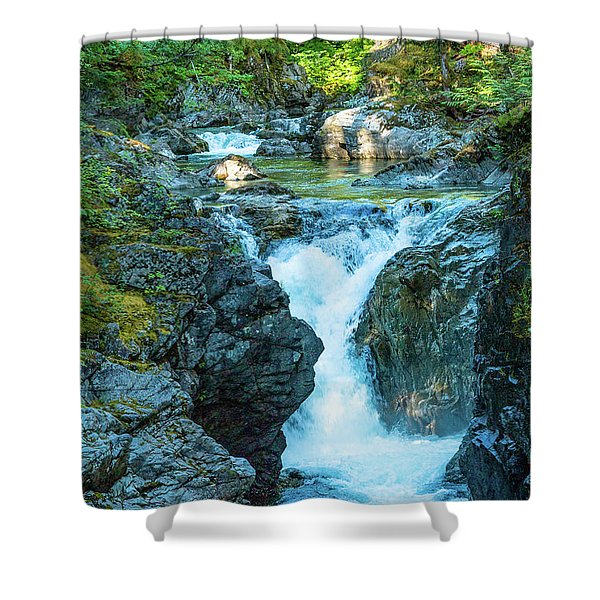 Little Qualicom Falls Shower Curtain