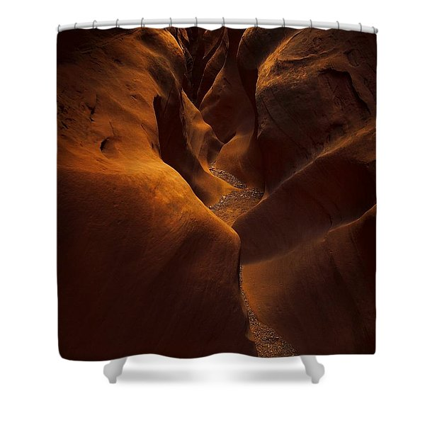 Little Wild Horse Shower Curtain